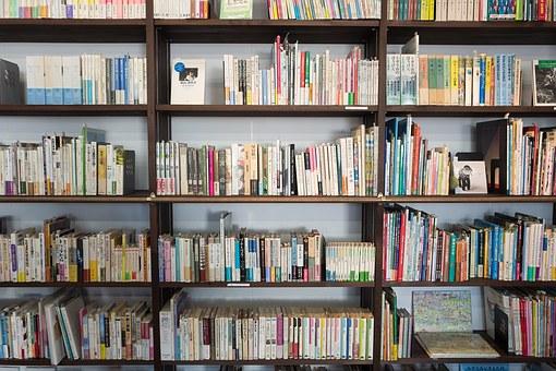 Gebrauchte Bücher sind wieder beliebt | MAGAZIN bei Mainz