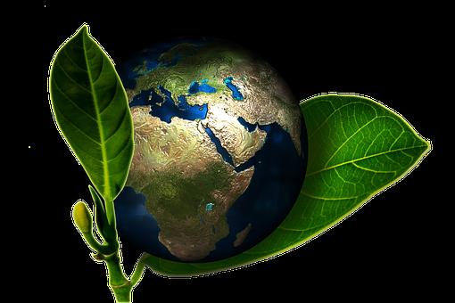 Nachhaltigkeit ist wichtig | MAGAZIN Halsenbach